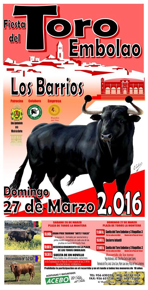 Toro Embolao 2016