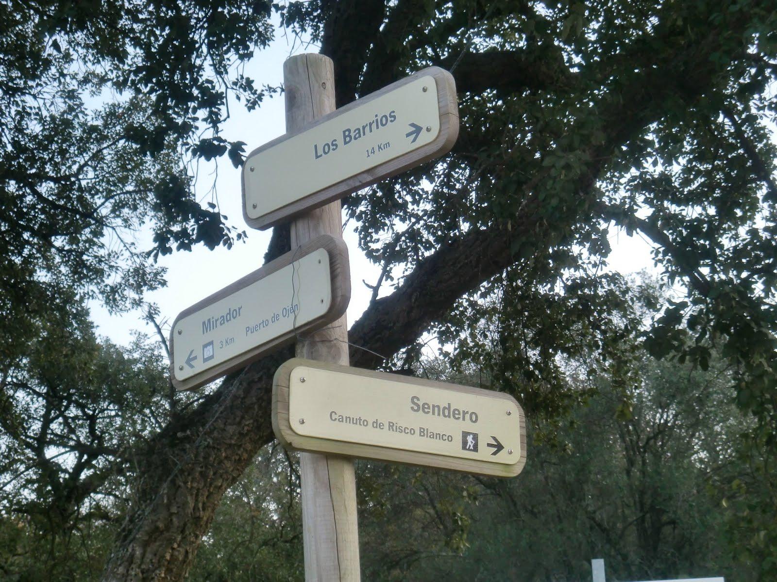 Caminata de Risco Blanco sábado 12 y visita guiada a Bacinete domingo 13