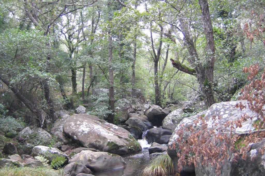 Sábado 17 sendero de San Carlos del Tiradero y domingo 18 Santuario de Bacinete