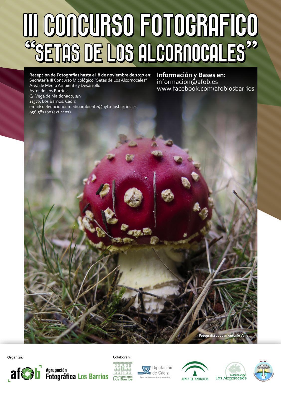 Vuelven las jornadas micológicas barreñas en su V edición.