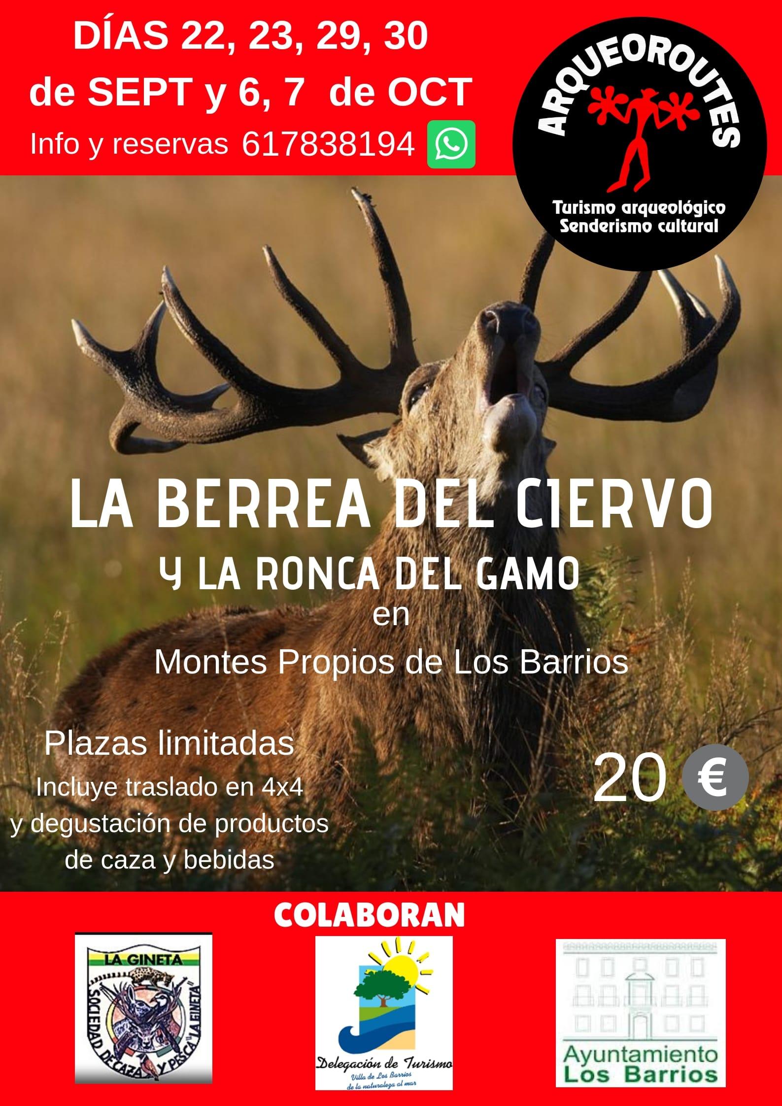 """Últimas plazas para este fin de semana, 6 y 7 de octubre  actividad """"Berrea del Ciervo y la Ronca del Gamo"""""""
