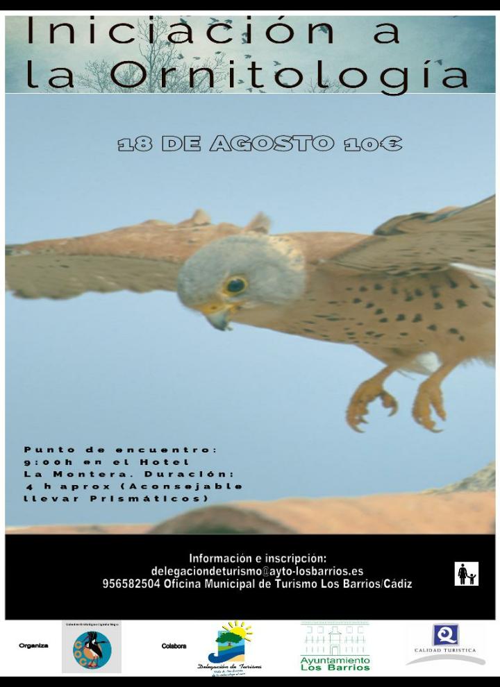 Iniciación a la Ornitología (domingo 18 de agosto 2019)