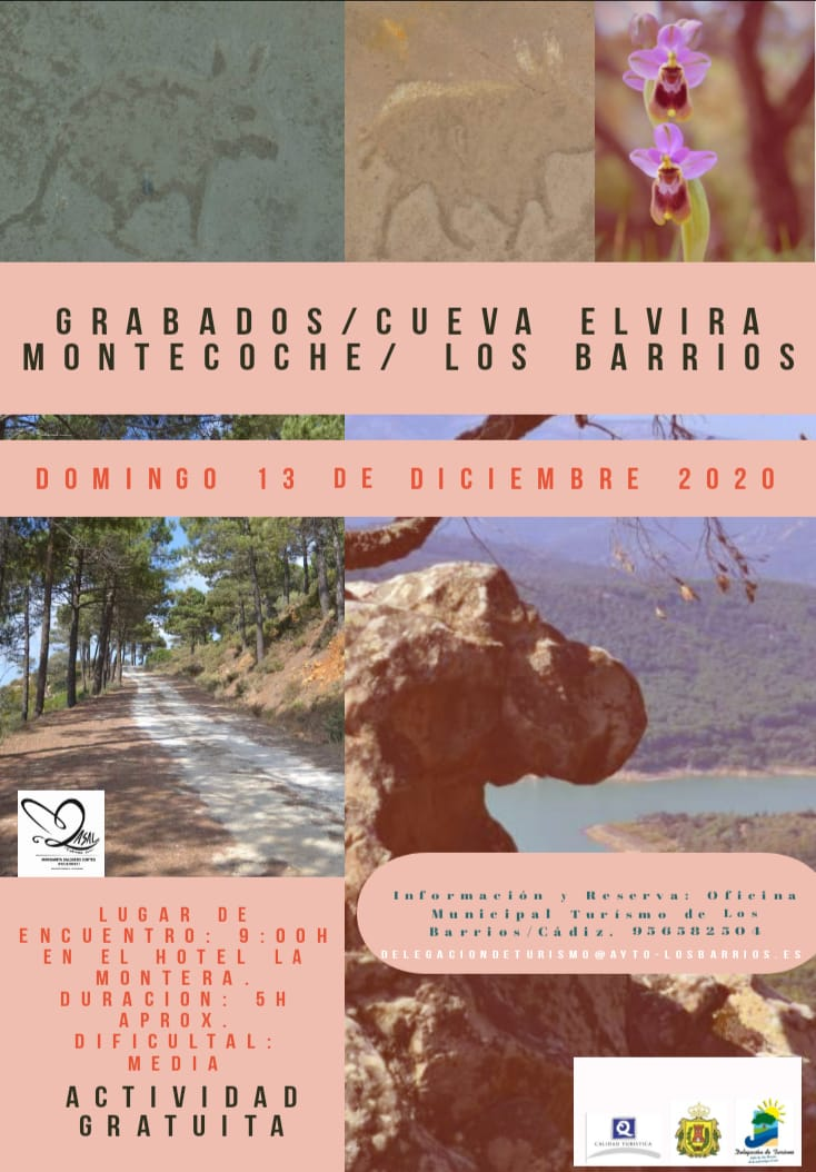RUTA CUEVA ELVIRA MONTECOCHE. 13 DE DICIEMBRE